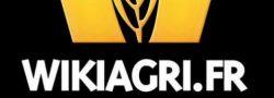 logo_wiki (1)